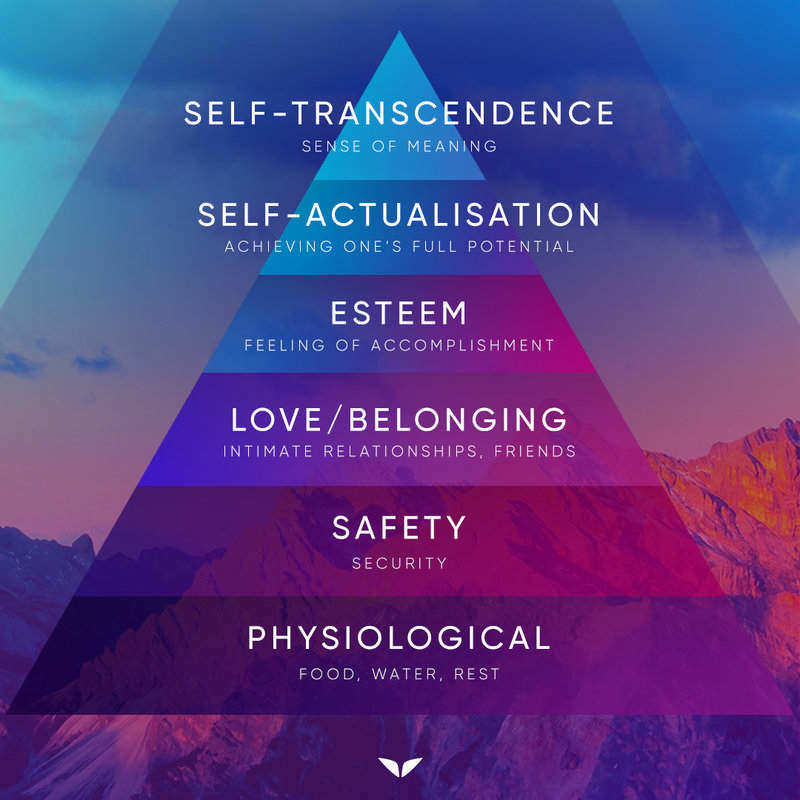 new Maslow's hierarchy of needs