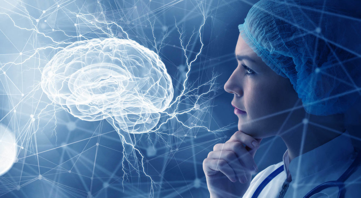 The Bridge Of The Brain: What Is The Pons? - Mindvalley Blog