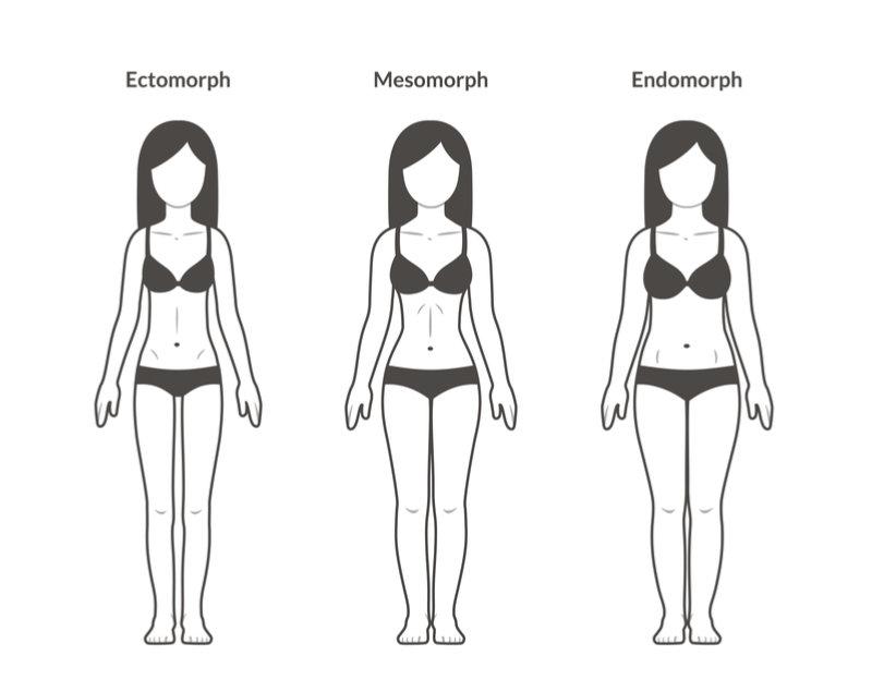 3 types bodies