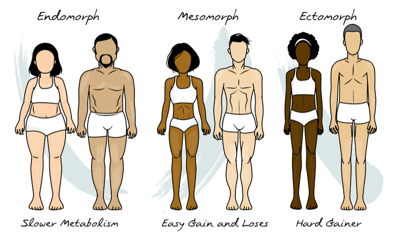Basic Body Types And Everything You Need to Know About Them