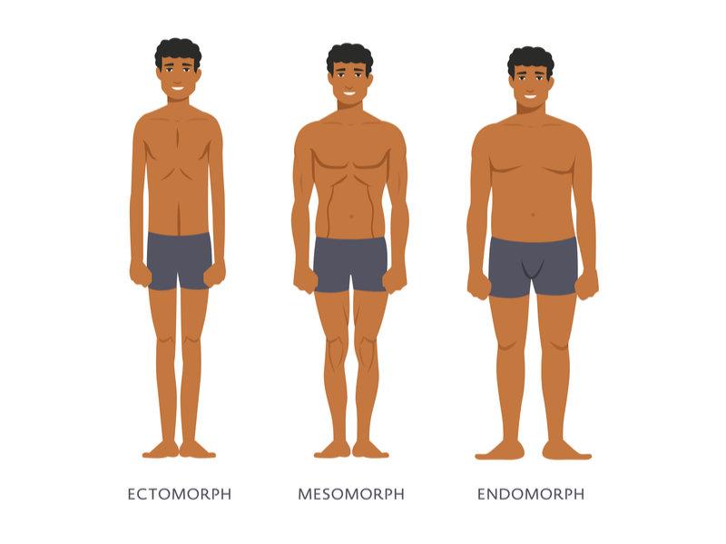 men_body_types