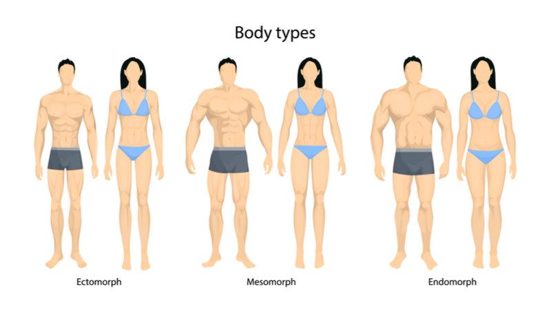 somatotonic_body_type
