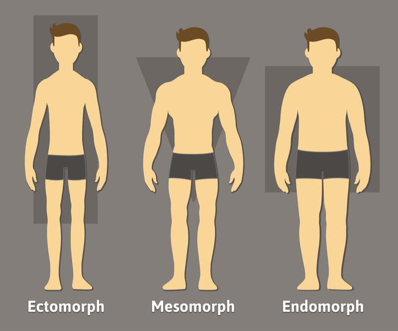 endomorph_male_body